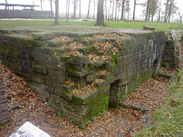 WWI_bunker,_Bayernwald[1]